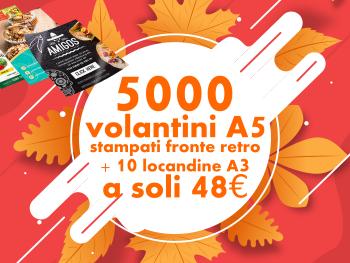 miniatura-offerta-stampa-5000-volantini-a5-10-locandine-a3